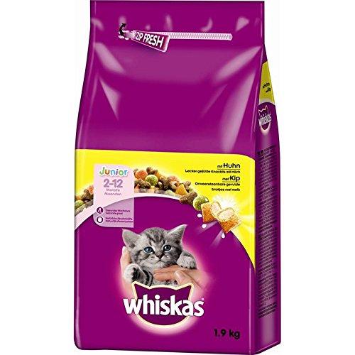 Whiskas droog junior kip kattenvoer 1,9 KG