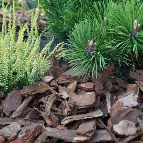 Wooden bark Chips Wood Chippings Mulch Landscaping Clean 80 L QUALITY 20-50 mm