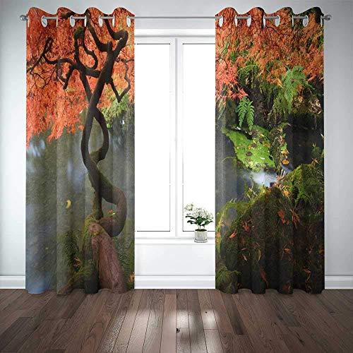 Cortinas de ventana largas, cortina de ventana de puerta, arce japonés durante el otoño en el jardín, cortinas opacas de ventana de Seattle para familiares, amigos, niños, 2 paneles, cortinas de venta