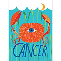 Lisa Congdon for Emily McDowell & Friends Cancer Zodiac Magnet