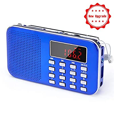 portable radio prunus