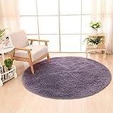 QUANHAO Alfombra de Terciopelo esponjosa súper Suave para Interiores, Linda Alfombra de Dormitorio esponjosa, Adecuada para cojín de sofá de baño (púrpura, 120x120cm)