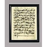 BiblioArt Series J. S. バッハ自筆譜『無伴奏ヴァイオリンのためのソナタ第1番冒頭部分(バッハのサイン入り)』ーA4サイズ額装品