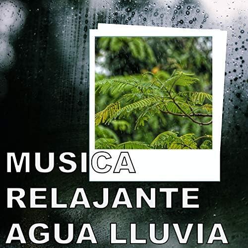 Musica Relajante Agua Lluvia, Sonidos De Lluvia y Tormentas & Musica Relajante