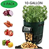 YOQXHY Potato Grow Bags 10 Gallon Garden Vegetables Planter Bag with Handles and Access Flap for Planting Potato Carrot Onion Taro Radish Peanut,3-Pack