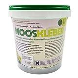Mooskleber | Zähflüssiger Bastelkleber zum Gestalten von Moosbildern und Mooswänden | Nach dem Trocknen grün | 1kg