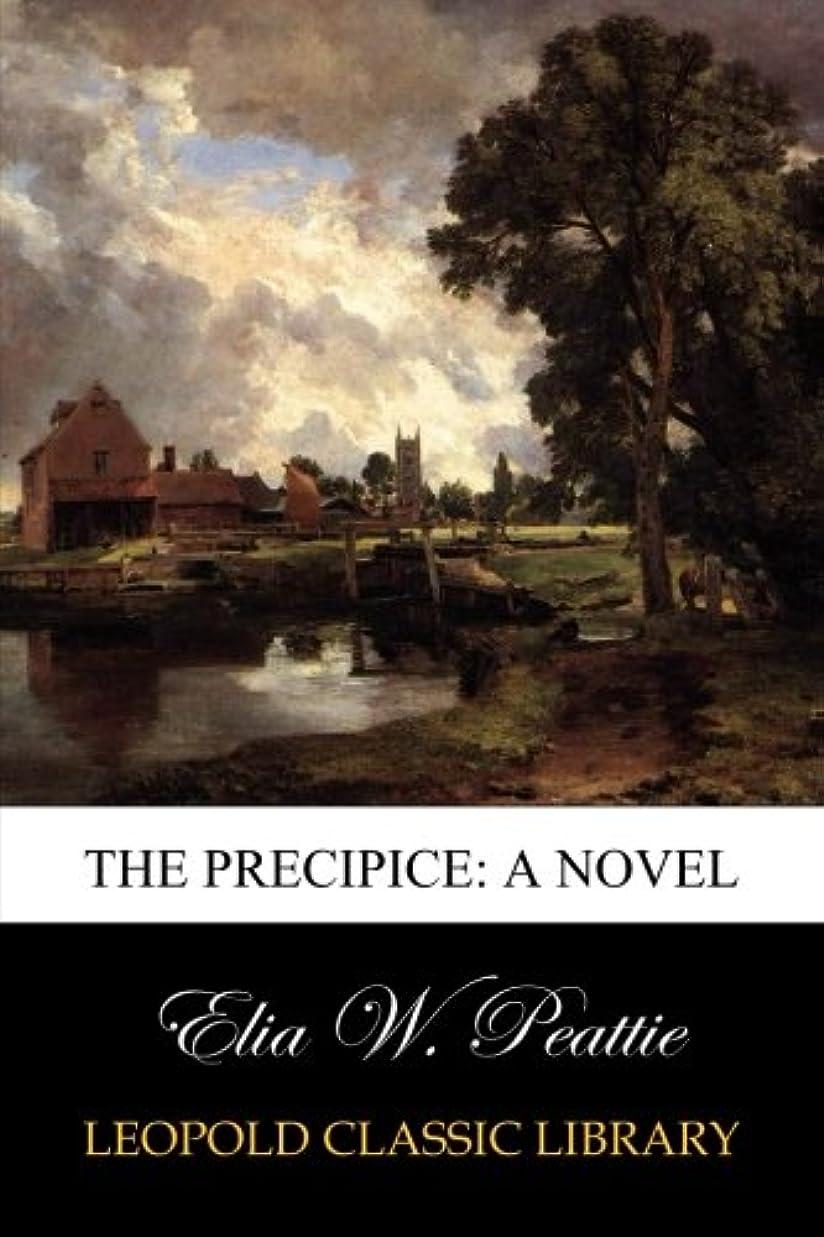 安心させる看板傾向がありますThe Precipice: A Novel