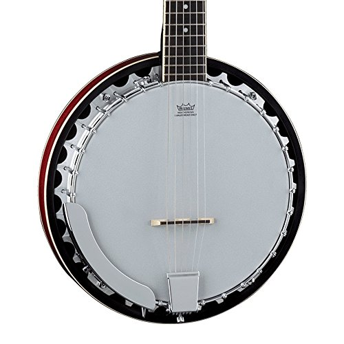 Dean Guitars Folk series BW5 Backwood Banjo