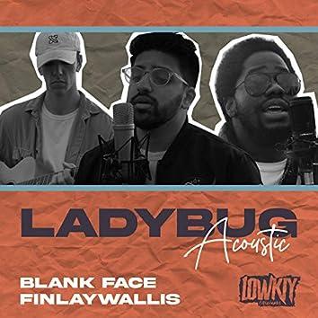 Ladybug (Acoustic)