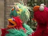 Elmo Finds A Baby Bird. Episode 4195
