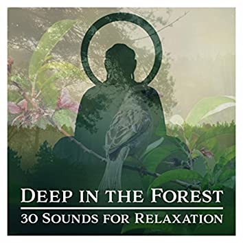 Deep in the Forest (30 Sounds for Relaxation, Meditation, Healing, Deep Sleep and Yoga, Natural Ambiences Collection)