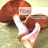 Pilze - unbekannt