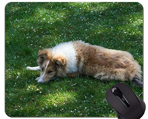 Dogs German Shepherd Puppies Gaming Mousepads und Collie Mouse-Pads