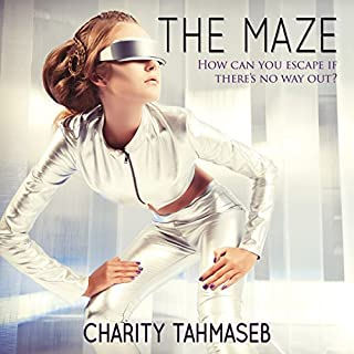 The Maze audiobook cover art