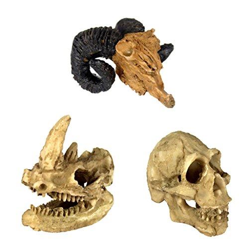 LOVIVER 3er Set Totenkopf Nashorn Ziege Schädel Höhle Terrarium Dekoration Aquarium Unterwasser Ornament