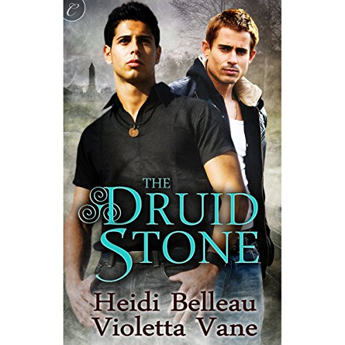 The Druid Stone audiobook cover art