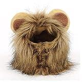Peluca de Melena para Gato y Perro pequeño, Disfraz de león, Vestido de Halloween con Orejas Fiesta de Mascotas Fiesta de Disfraces Ropa para Gatos (L)