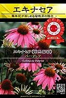 【種子】 Prime Perennial Collection エキナセア パープレア Life with Green