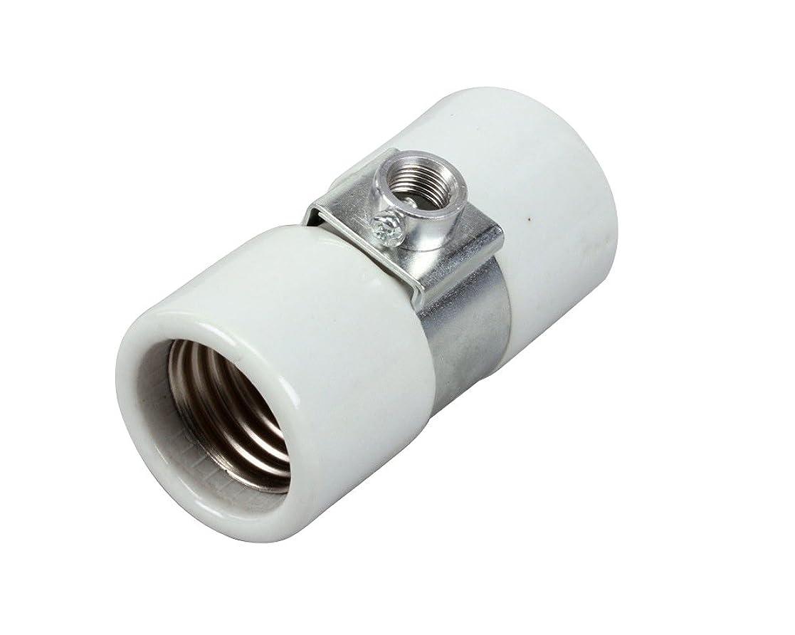 休みマイクバクテリアAPW Wyott 1505700、ソケットライト?–?600?W-250-volt