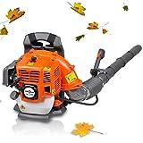 Anself 42,7 cc Petrol Backpack Leaf Blower Garden Leaf Blower, 900 m³/h