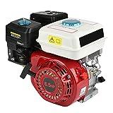 Motor de gasolina de 4 tiempos, 6,5 HP para desbrozadora, cortasetos, motosierra de poda, accesorios para hidrolimpiadoras del generador de bomba de agua (20 mm)