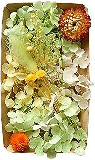 ( ボタニカルガーデン)カラフルフラワー福袋 ハーバリウム 花材 材料 アロマワックスサシェ プリザーブドフラワー ドライフラワー アジサイ