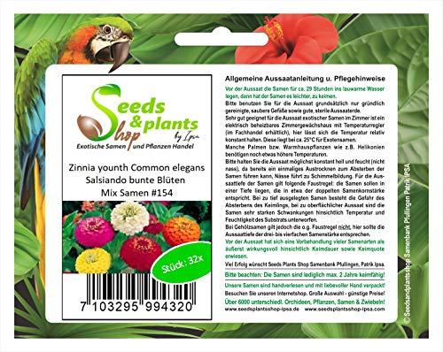 Stk - 32x Zinnia younth Common elegans Salsiando bunte Blüten Mix Samen #154 - Seeds Plants Shop Samenbank Pfullingen Patrik Ipsa