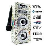 Biwond Joybox Homewired Karaoke System - Karaoke Systems (10W, Rotary, Wired, MMC, SD, 3,5 mm, LED)