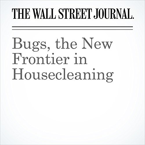 Bugs, the New Frontier in Housecleaning copertina