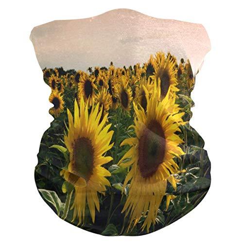 Zonnebloemveld gezichtsmasker Fiets Hoofdband Buitensporten Bivakmuts voor druppelzon UV-bescherming