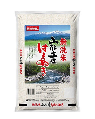 幸南食糧 山形県産 はえぬき 5kg 平成26年産 [6053]