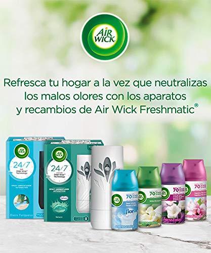 Air Wick 3113393