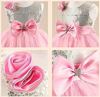 Flower Girl Little Princess Pink Sleeveless Dress Lovely Bow Banquet Party Skirt Gzq1 (4-5 Years)