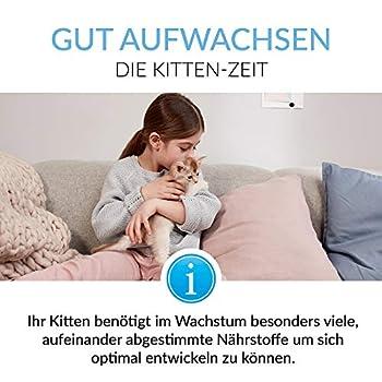 GimCat EXPERT LINE Pâte Kitten – Snack fonctionnel pour chats, renforce la croissance des jeunes chats – 1 tube (1 x 50 g)