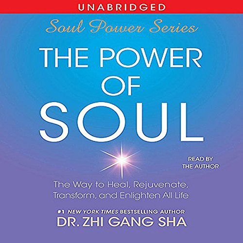 The Power of Soul audiobook cover art
