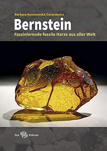 Bernstein: Faszinierende fossile Harze aus aller Welt