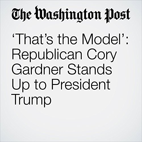 'That's the Model': Republican Cory Gardner Stands Up to President Trump copertina