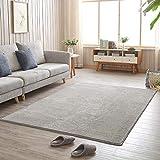 ZPSPZ alfombras Salon Modernas,alfombras Salon Pelo Corto, Alfombra Gris, Dormitorio, sofá para el hogar, fácil de Limpiar, hipoalergénico-Gris Claro_180x200cm