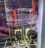 Incubadora de huevas de Peces acuáticos para criadero de Peces de Acuario, cíclidos