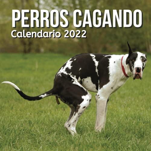 Calendario Perros Cagando 2022: Regalos Gracioso Para Amantes de los Perros   Regalo de Broma   Divertidos Para Amigos, Mujer, Hombre, Niños, Adolescentes, Adultos, Cumpleaños, Navidad