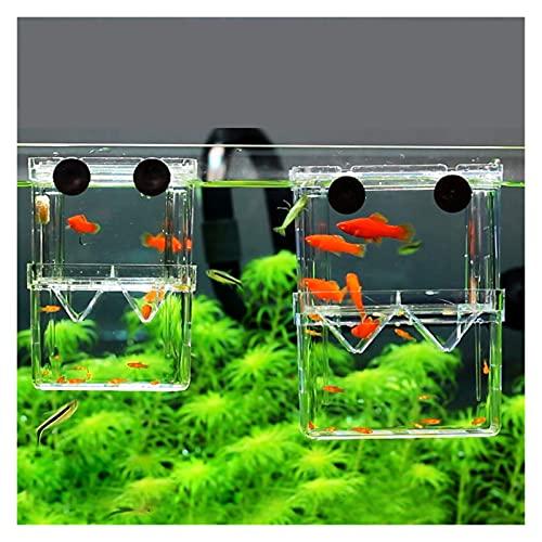 Pecera Cubierta de doble terraza Caja de aislamiento de cría de peces Caja de acuario Criador Tanque de peces...