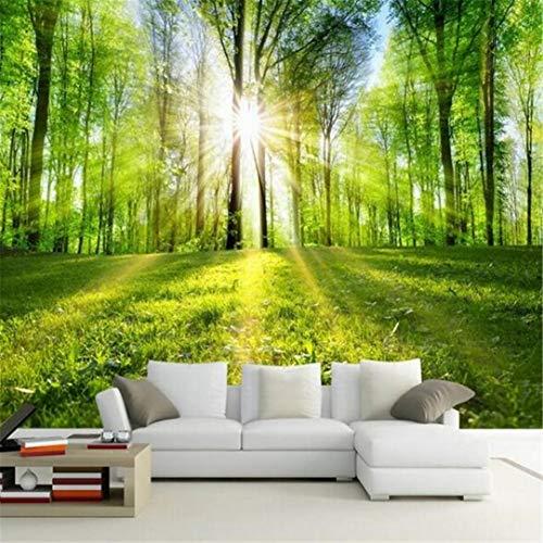 3D behang muurschildering vliesstof aangepaste muurschildering behang zonlicht bos natuur landschap wandschilderij woonkamer tv achtergrond 3d behang wandschilderij vliesstof wooncultuur behang 120 x 100 cm.