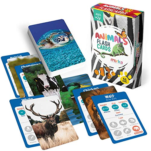 merka Animal Flash Cards Kids Flashcards Speech Therapy Materials Montessori Animals Pictures with Facts