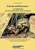 Testudo und Hermanni – zwei Schildkröten, wie sie unterschiedlicher nicht sein können: Eine wahre Geschichte über die Notwendigkeit der naturnahen Haltung von Griechischen Landschildkröten