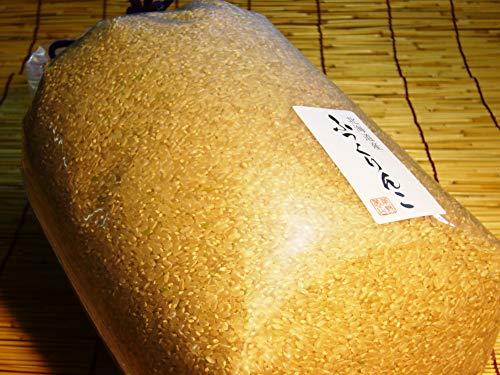 北海道産ふっくりんこ 玄米 5kg×2袋セット