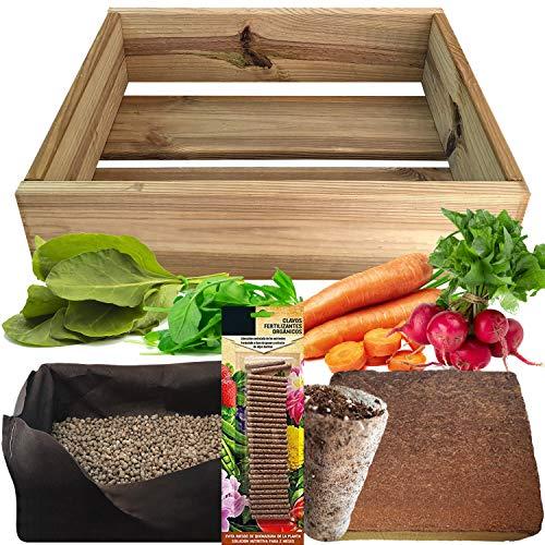 No Plan B for Earth Kit de Cultivo con Maceta de Pino Tratada. Semillas Baby Leaf, Espinacas, RABANITO Rojo, Zanahoria