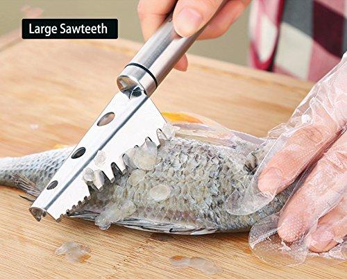 Desescamador para Pescado Inoxidable
