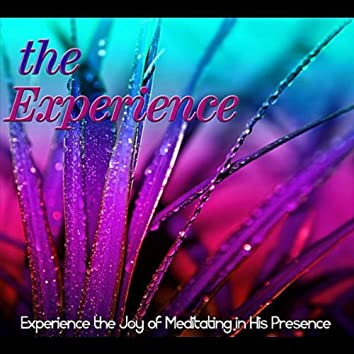 The Experience: Experiencing the Joy of Meditating in His Presence