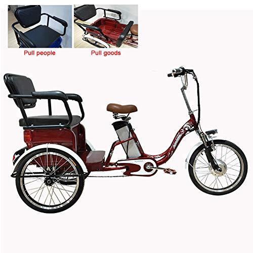 DNNAL Triciclo eléctrico, Triciclo de Pedal Power Bike Asiento Doble con Gran...