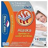 Bleu Clin Lot de 2 Oreillers Rectangulaires, Confort 'Alaska', Blanc, 50x70 cm, OCPI